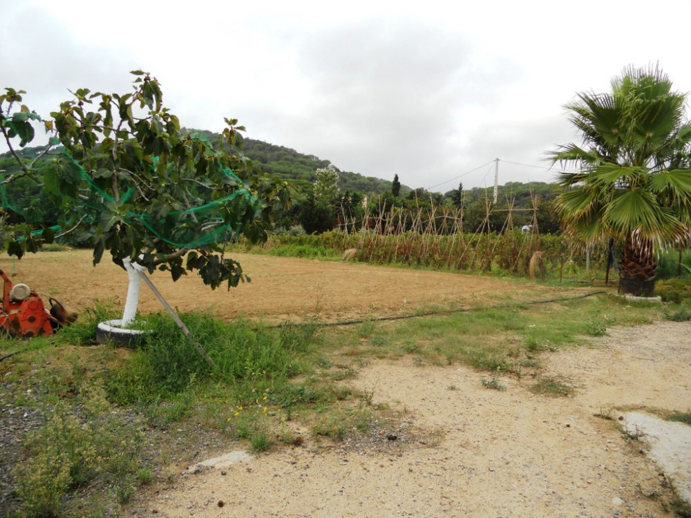 Дом в испанском стиле на побережье Коста-Брава с виноградником
