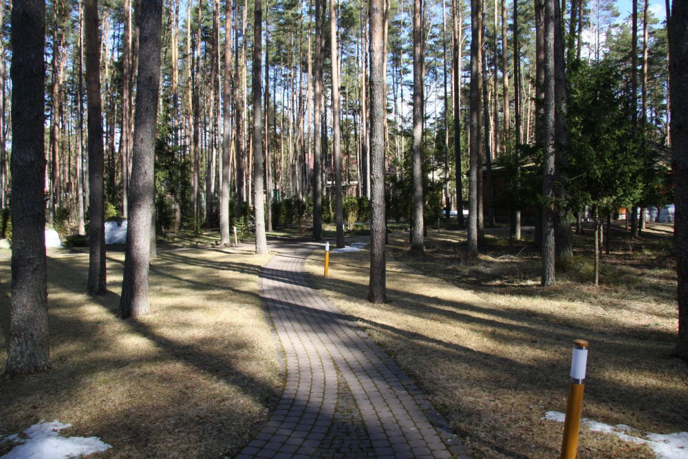 Коттедж в Выборгском районе Ленинградской области в пос.Озерки