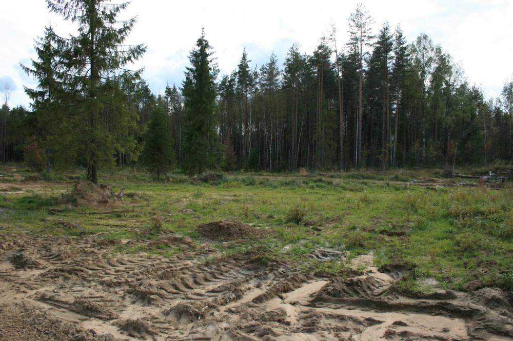 Земельный участок ДНП Лемболовская твердыня